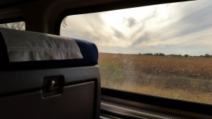Perspective from my window on the train